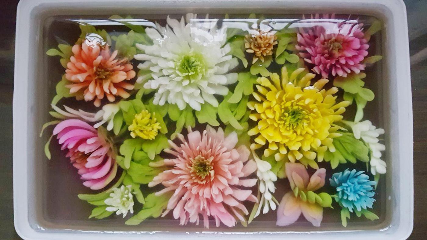 TzuchiUSA-NY-continuing-ed-flower-jelly