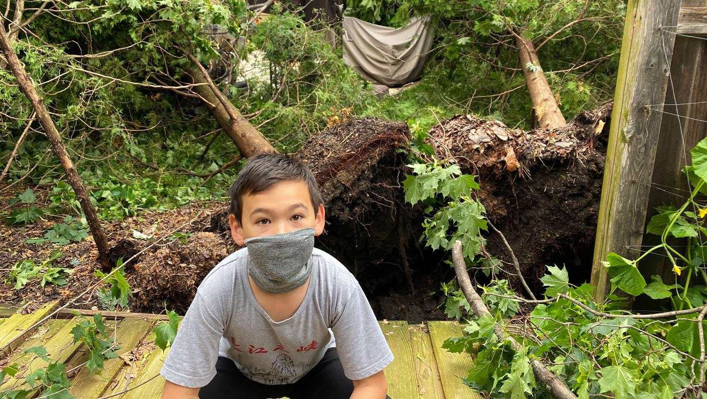 札姆斯基家精心打造的庭院,樹幾乎全被吹倒。攝影/馬樂