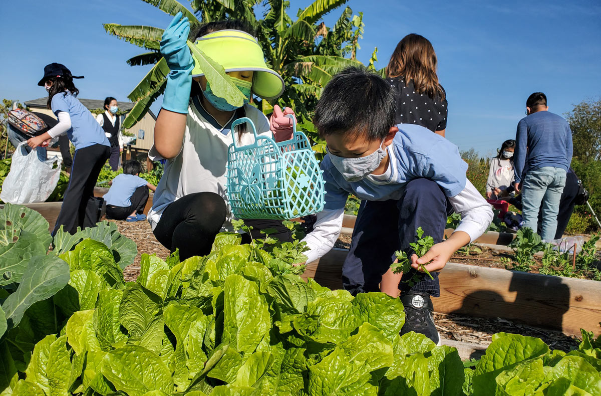 education-fundraiser-why-life-sience-garden-4