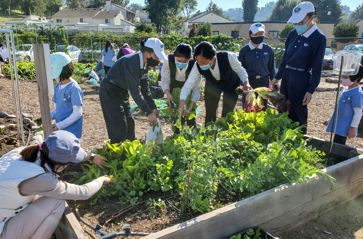 Education-fundraiser-why-life-science-garden-6